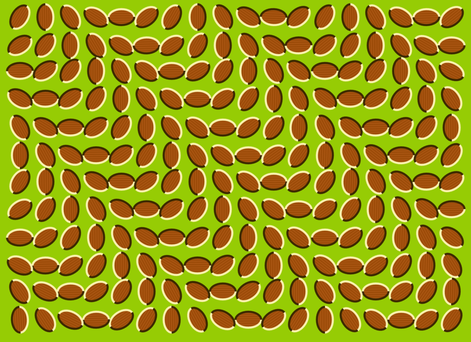 Bilderesultat for optical illusion