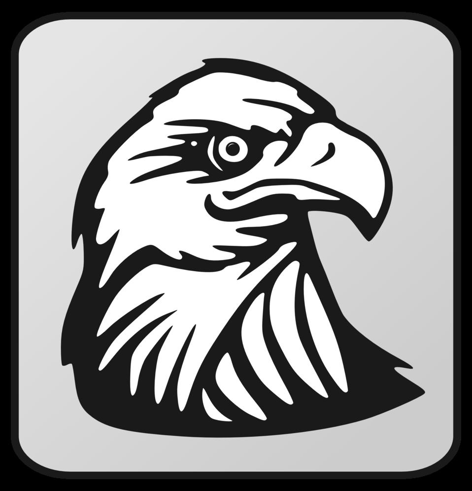 Eagle Outline