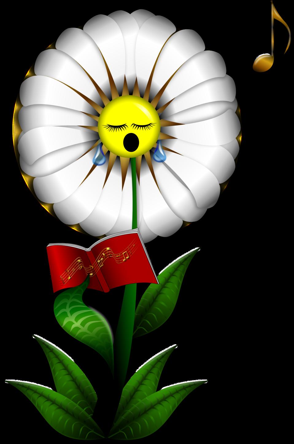 Singing Daisy