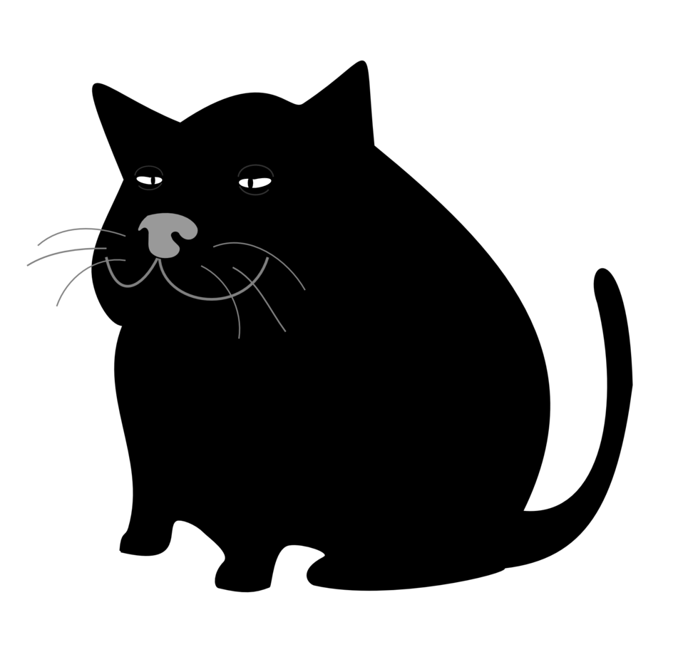 Black Cat / Gato Negro