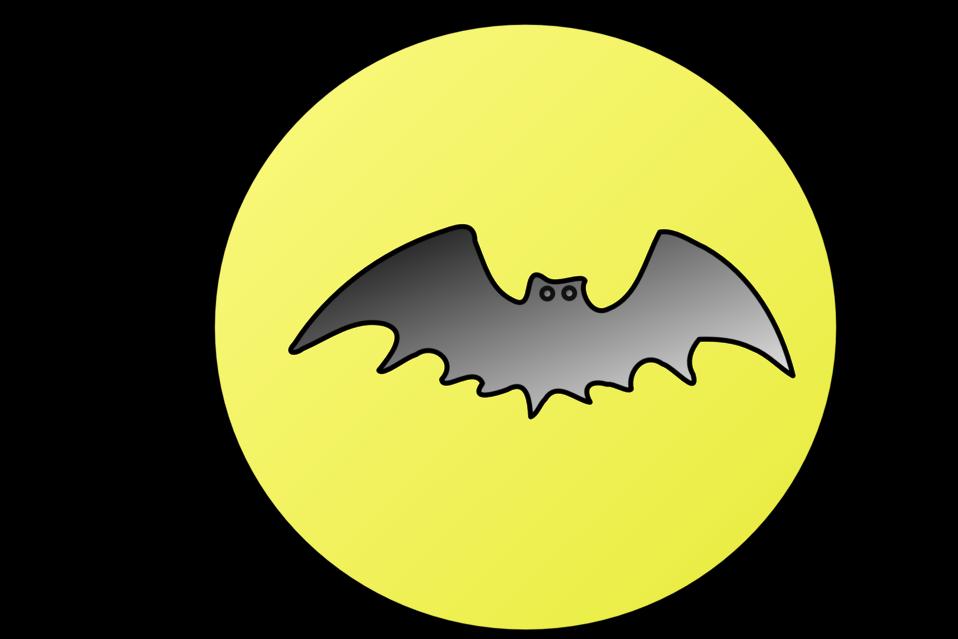 Bat-in-front-of-moon