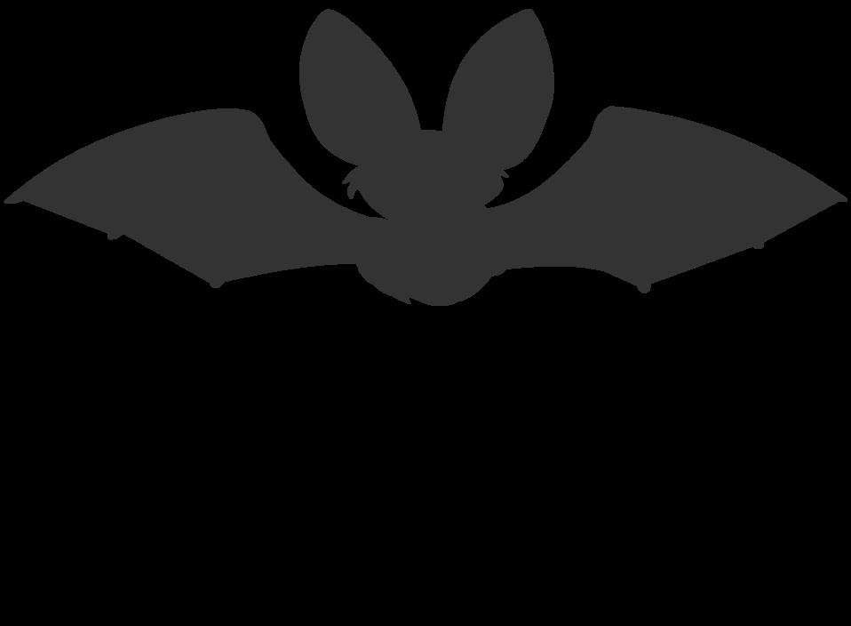 Bat Silhouette Icon