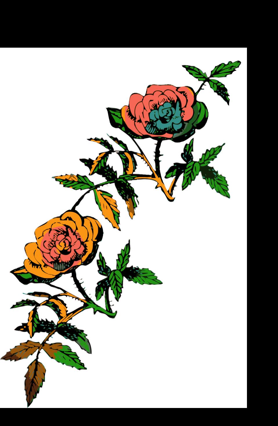 Rose decoration in color