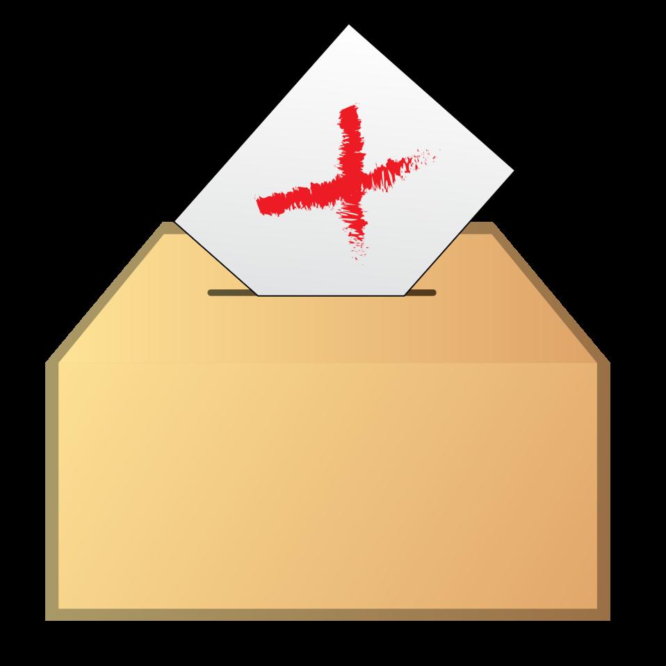 Vote no icon