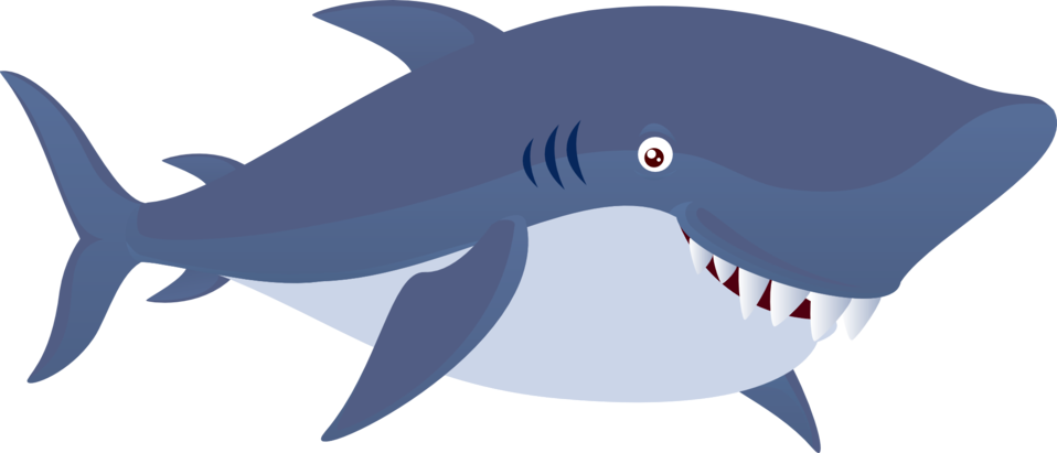 Cute Shark Animal