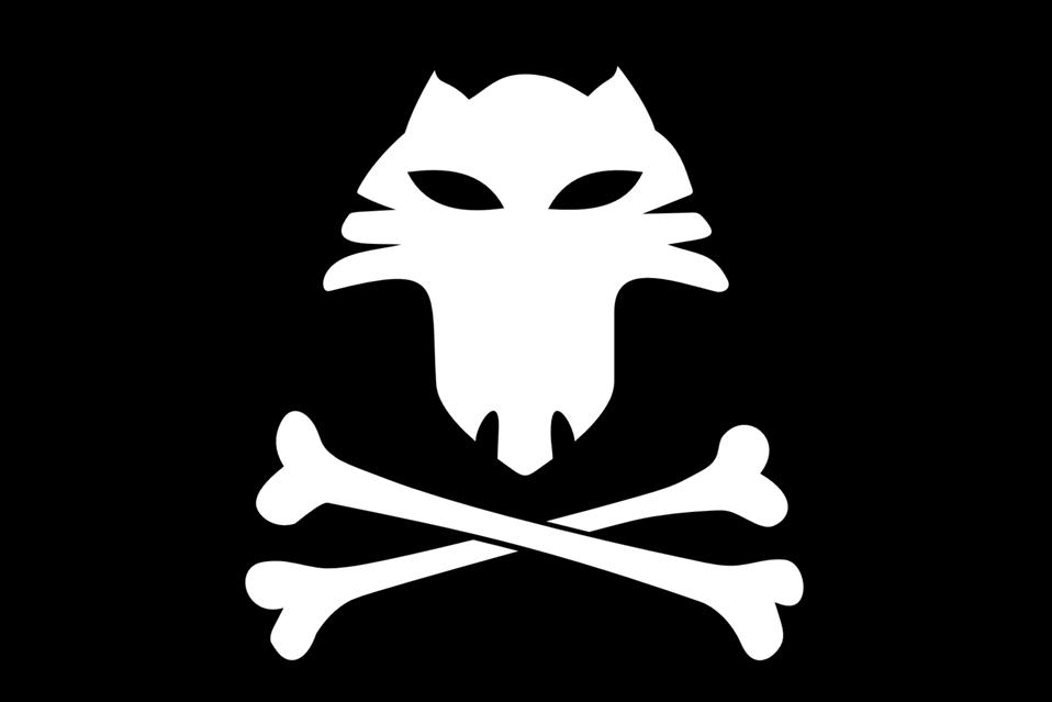 Jolly Roger Cat
