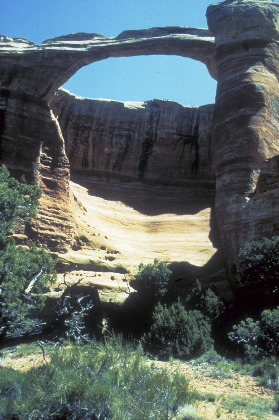 Arch in Rattlesnake Canyon in the Colorado Canyons National Conservation Area.