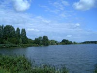 Magyar:  A kutasi halastó (szabad felhasználás, saját fotó)