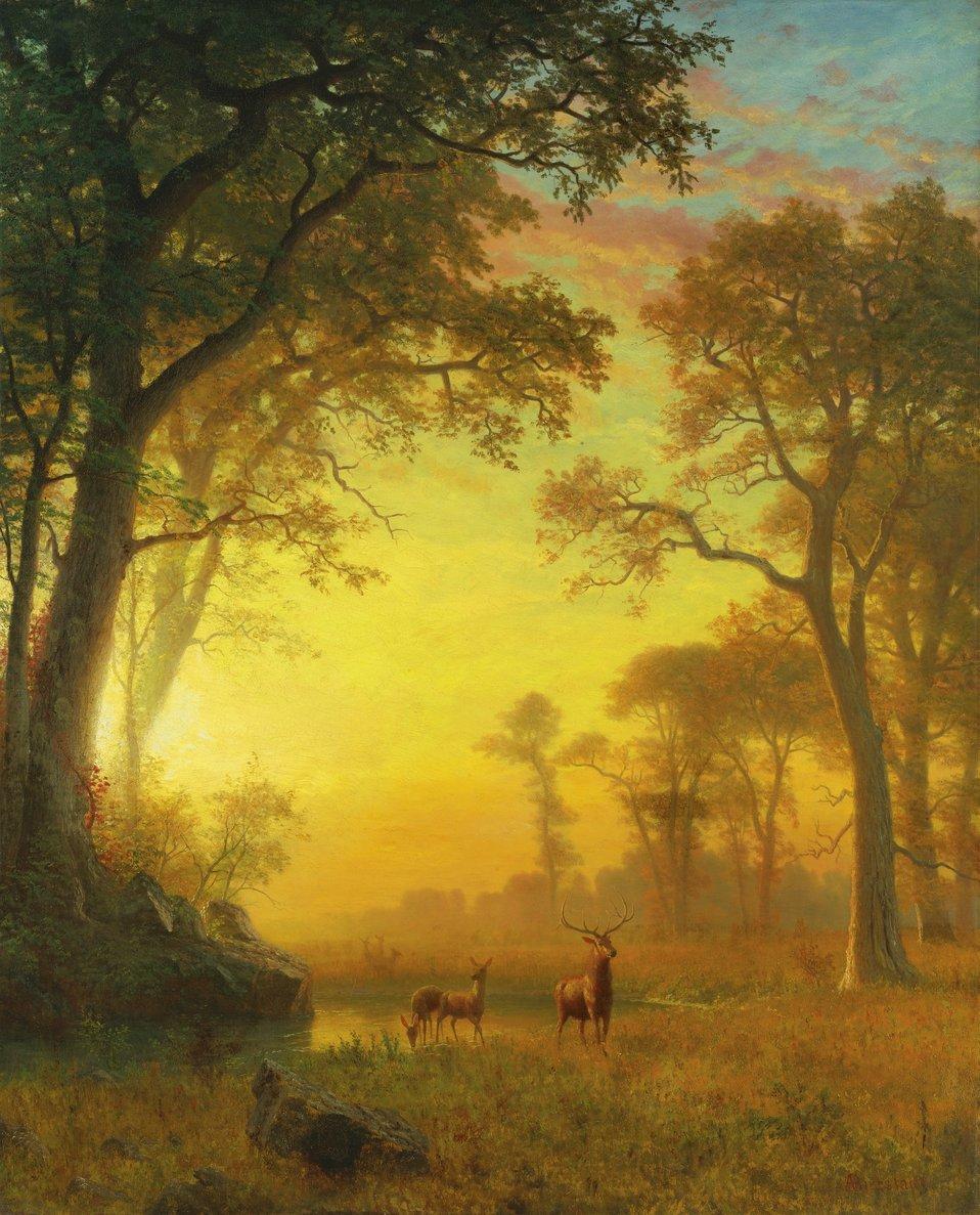 Albert Bierstadt - Light in the Forest.jpg