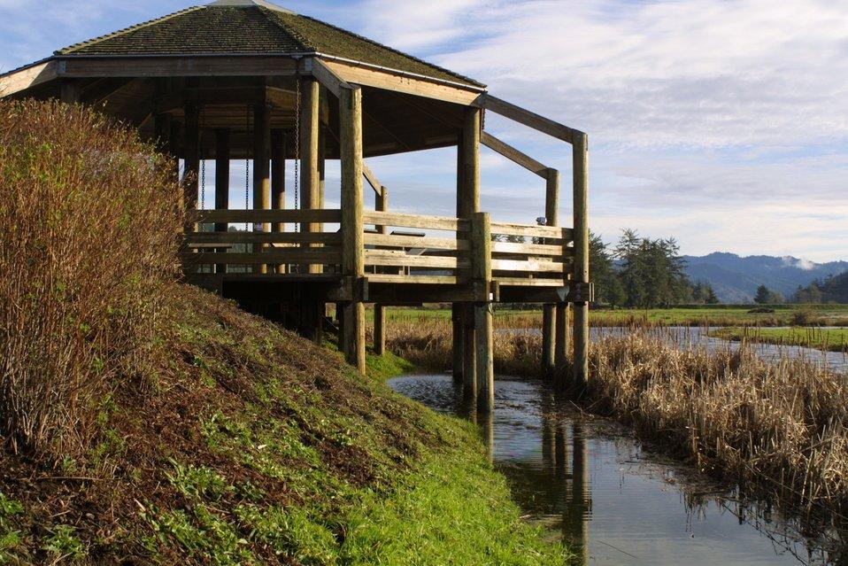 Wildlife viewing platform at the Dean Creek Watchable Wildlfie site near Reedsport, Oregon.
