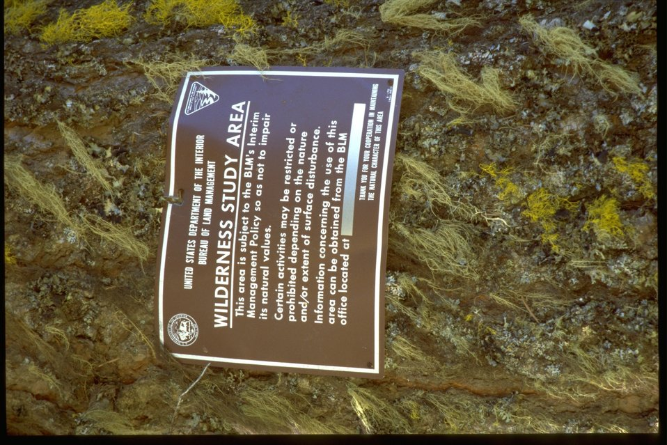 Wilderness Study Area sign.
