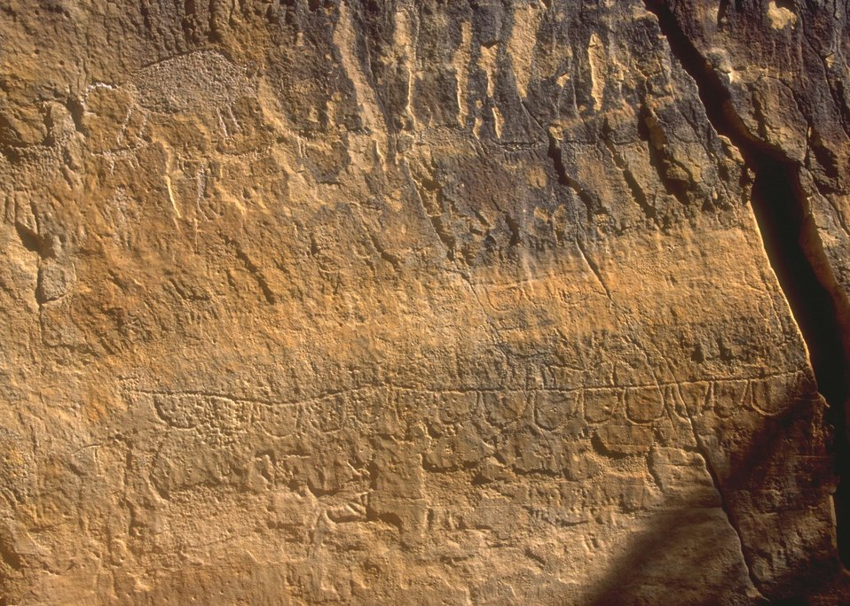 Petroglyph panel in Whoopup Canyon, Newcastle Field Office.