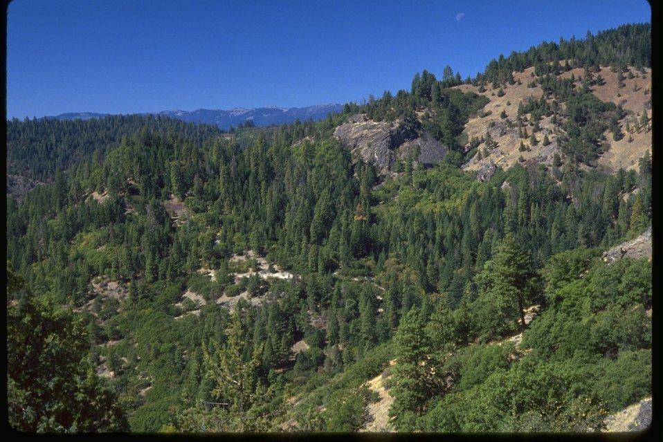 West Hutton Creek.