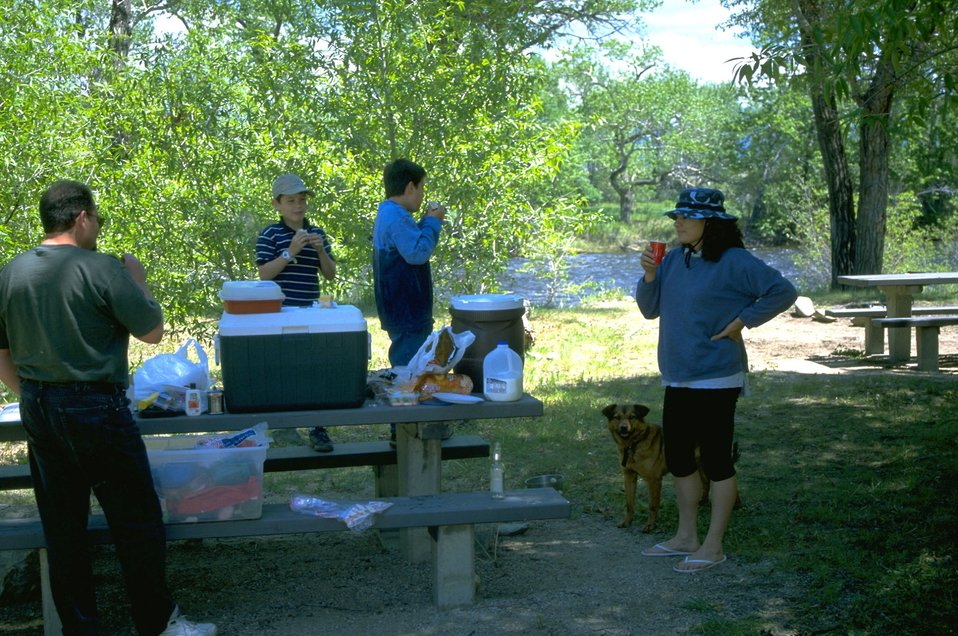 Picnicking at Divide Day Use Area