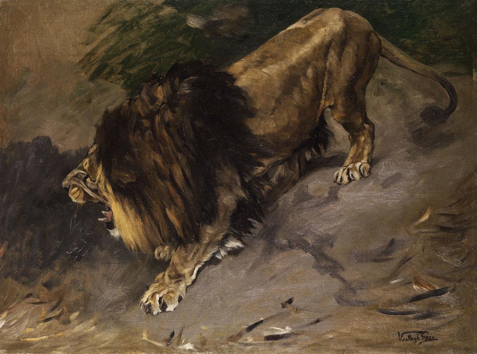 Deutsch:  Brüllender Löwe. Öl auf Leinwand. 77 x 104 cm.