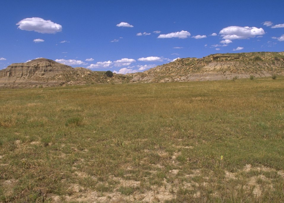 General view of Lance Creek Fossil Area, Newcastle Field Office.