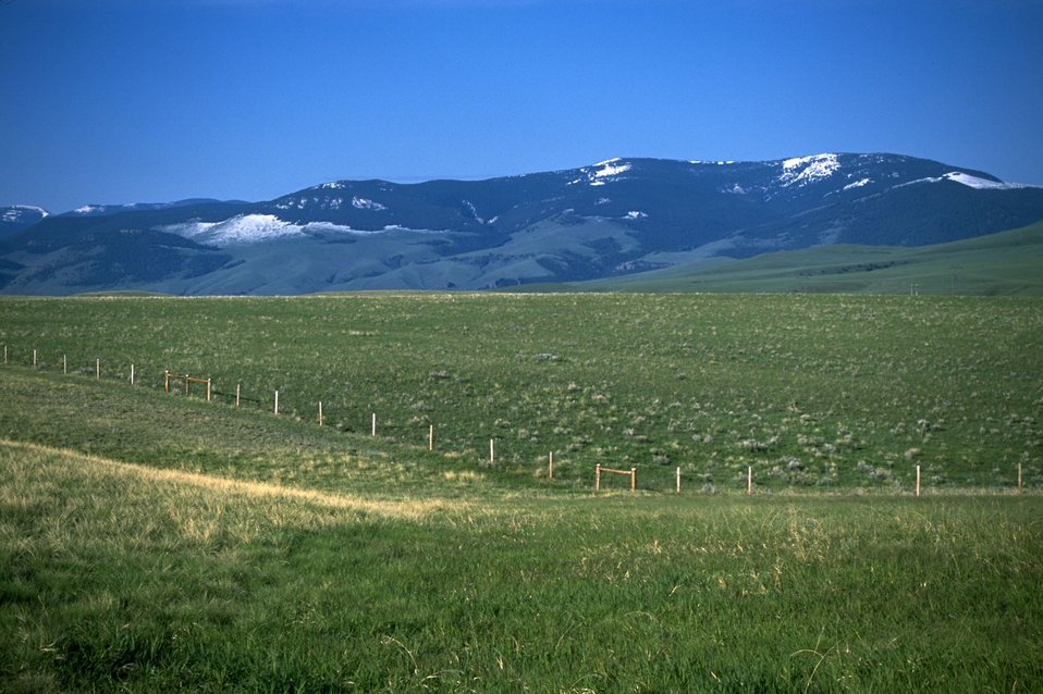 Snow-topped mountains looking down on a grassy meadow