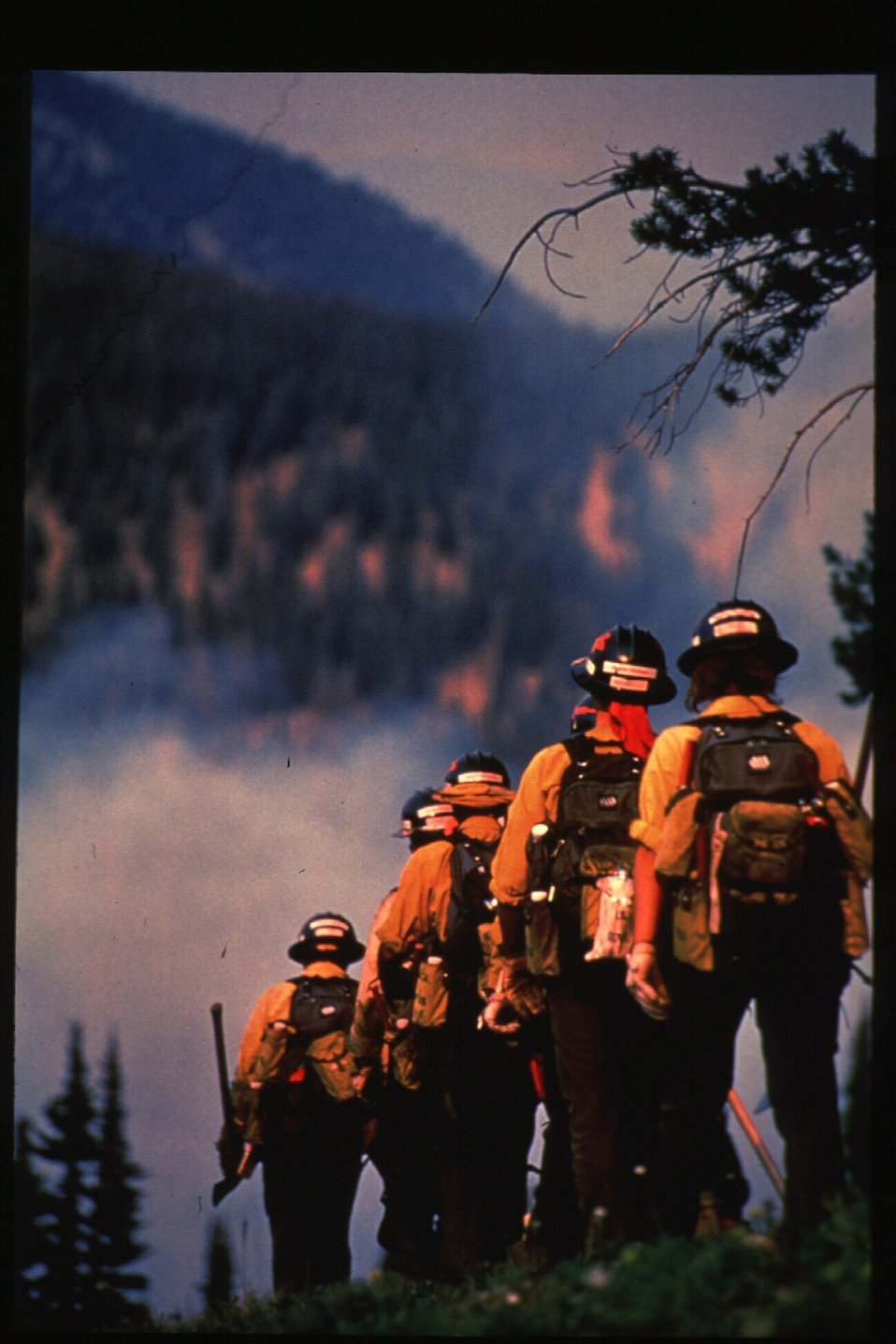 Boise Foothills Fire  Danskin Mountains and South Fork of Boise River  Wild Fire Fighters  Four River Field Office  LSRD  Lower Snake River District
