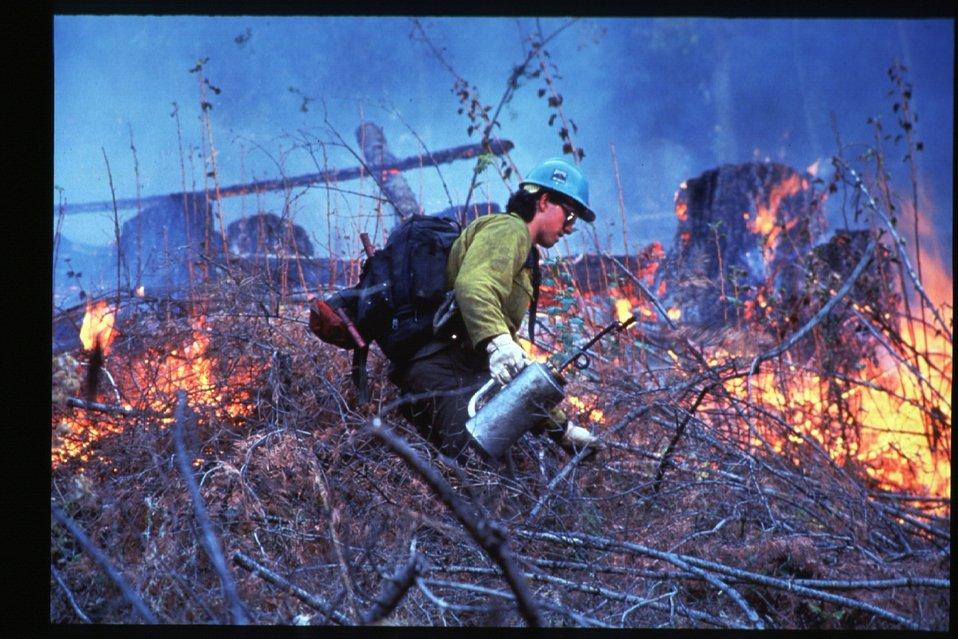 Boise Foothills Fire  Danskin Mountains and South Fork of Boise River  Wild Fire Fighter  Prescribed burn  Four River Field Office  LSRD  Lower Snake River District