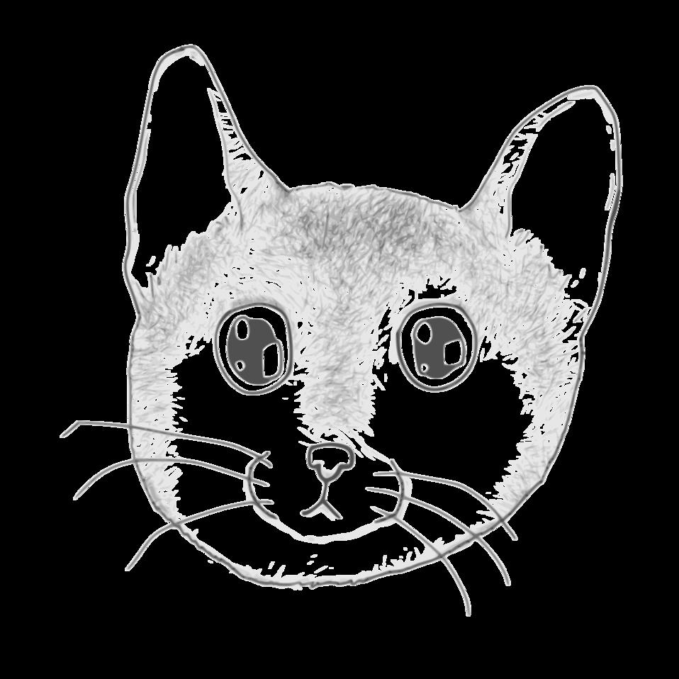 A stripped kitten face