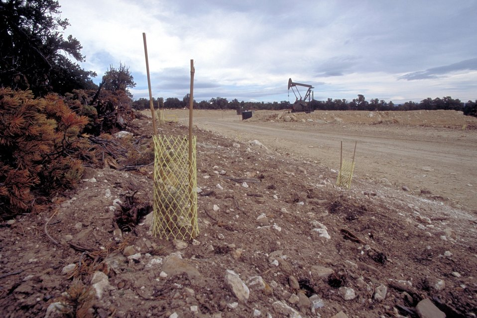 Rehab in coal bed methane production units near Price, Utah.