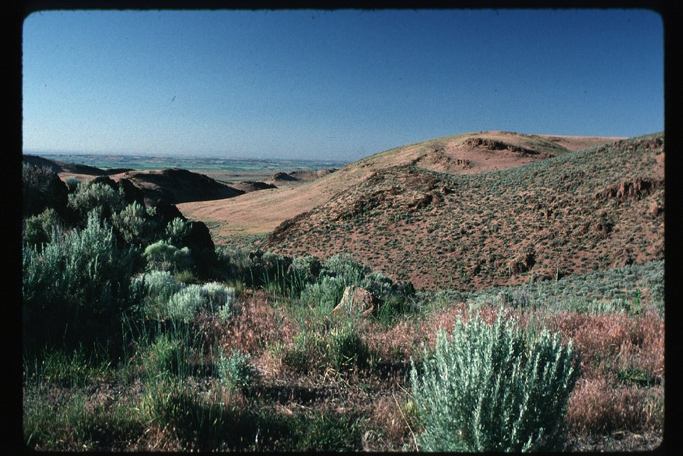 Owyhee Foothills looking toward Canyon County  Rangeland  Four Rivers Field Office  LSRD  Lower Snake River District