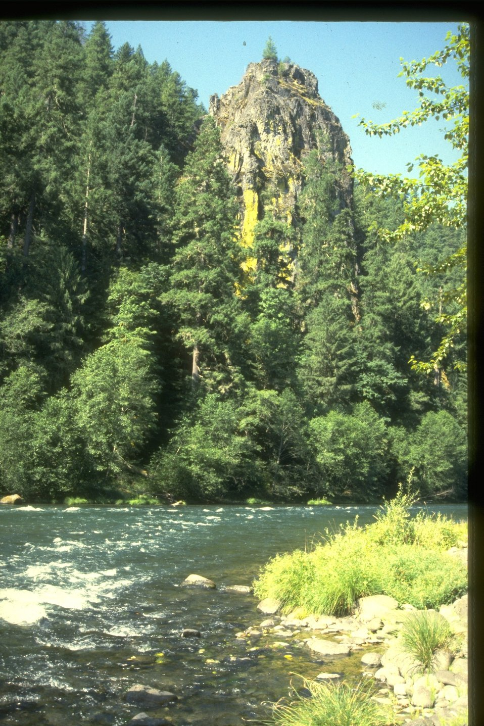 Eagle Rock on the Mckenzie River.  Good view of the riparian area.