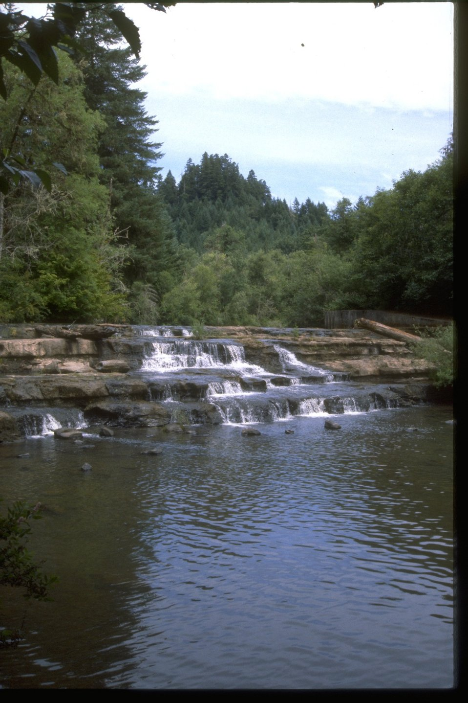 View of Siuslaw Falls