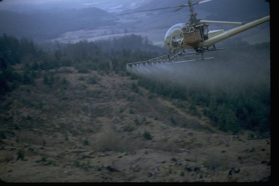 Helicopter herbicide spray operations in a clear cut area.