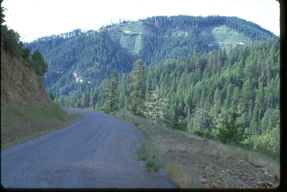 Clearcuts can be seen from a logging road.