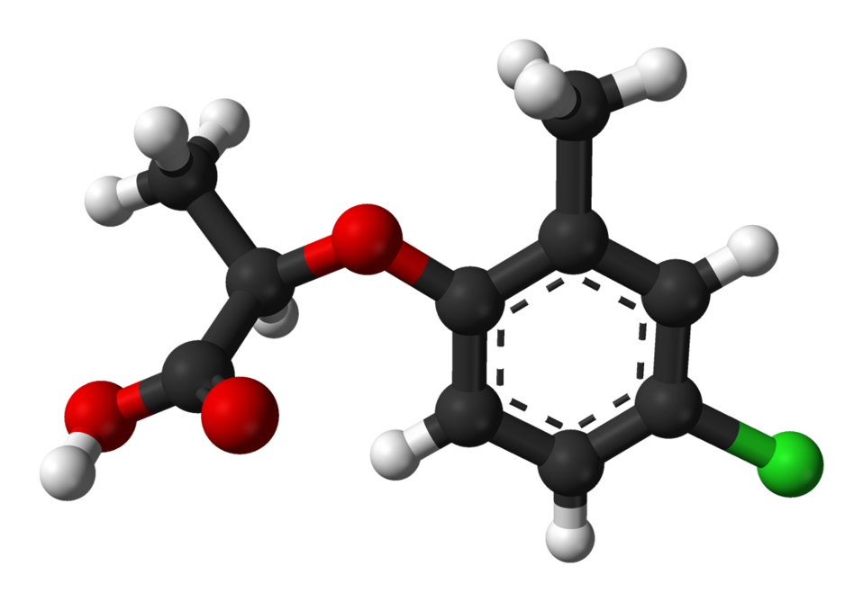 Ball-and-stick model of the (R)-( )-mecoprop molecule, as found in the crystalline state. X-ray crystallographic data from G. Smith, C. H. L. Kennard, A. H. White and P. G. Hodgson (April 1980). '( -)-2-(4-Chloro-2-methylphenoxy)propionic acid (mecoprop)