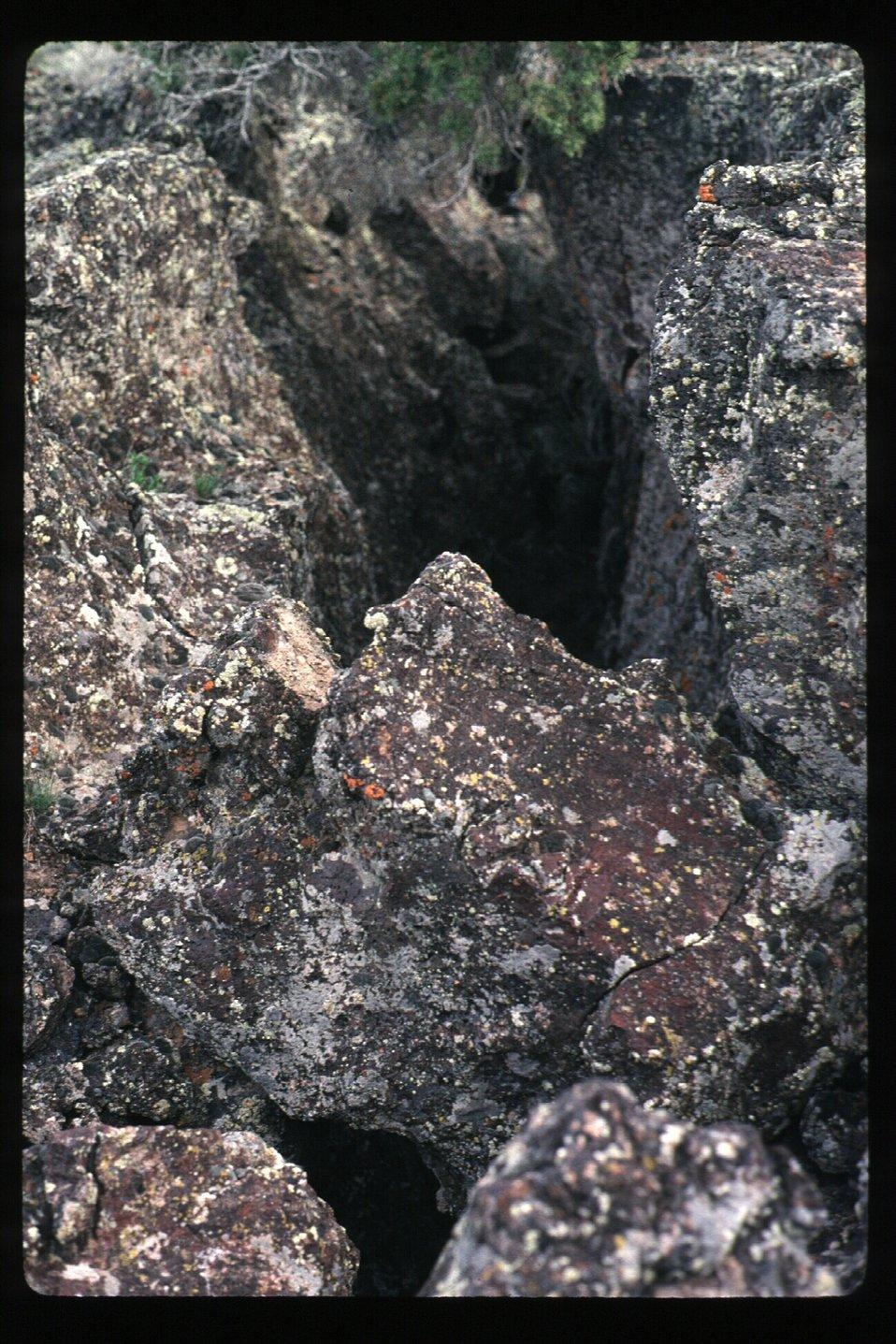 Hells Half Acre  Lichen on rocks  Wilderness  Idaho Falls Field Office  USRD  Upper Snake River District