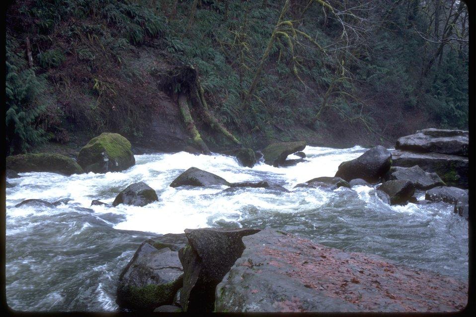 Boulders in Lake Creek.