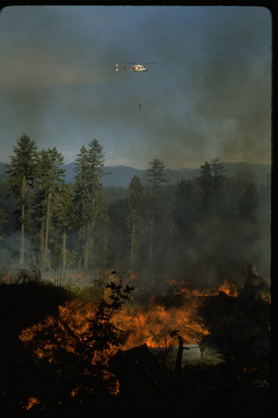 Helicopter flying  over a prescribed fire.