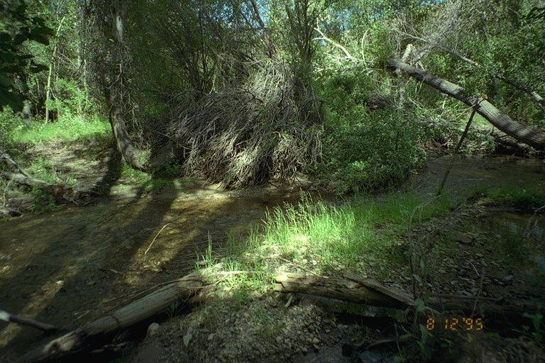 Riparian area  Public Lands  Salmon Field Office  UCSC  Upper Columbia Salmon Clearwater District