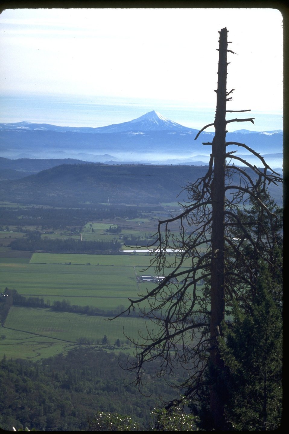 Upper Table Rock and Mount Mcloughlin in the background.