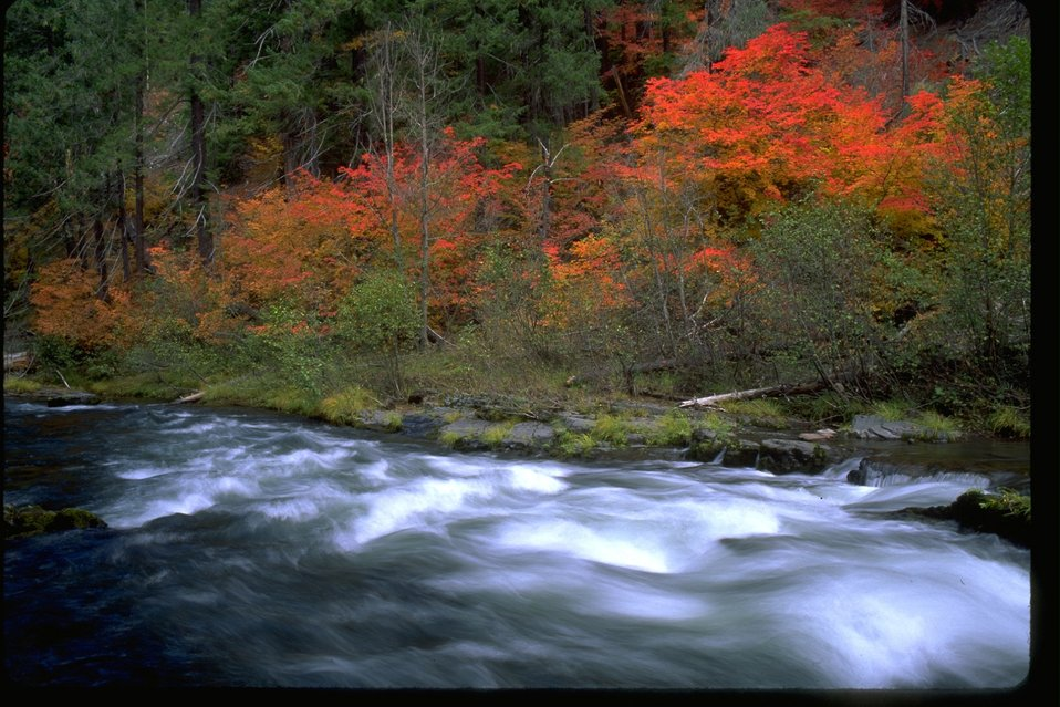 A scenic view of the Upper Rogue River and the fall  foliage.
