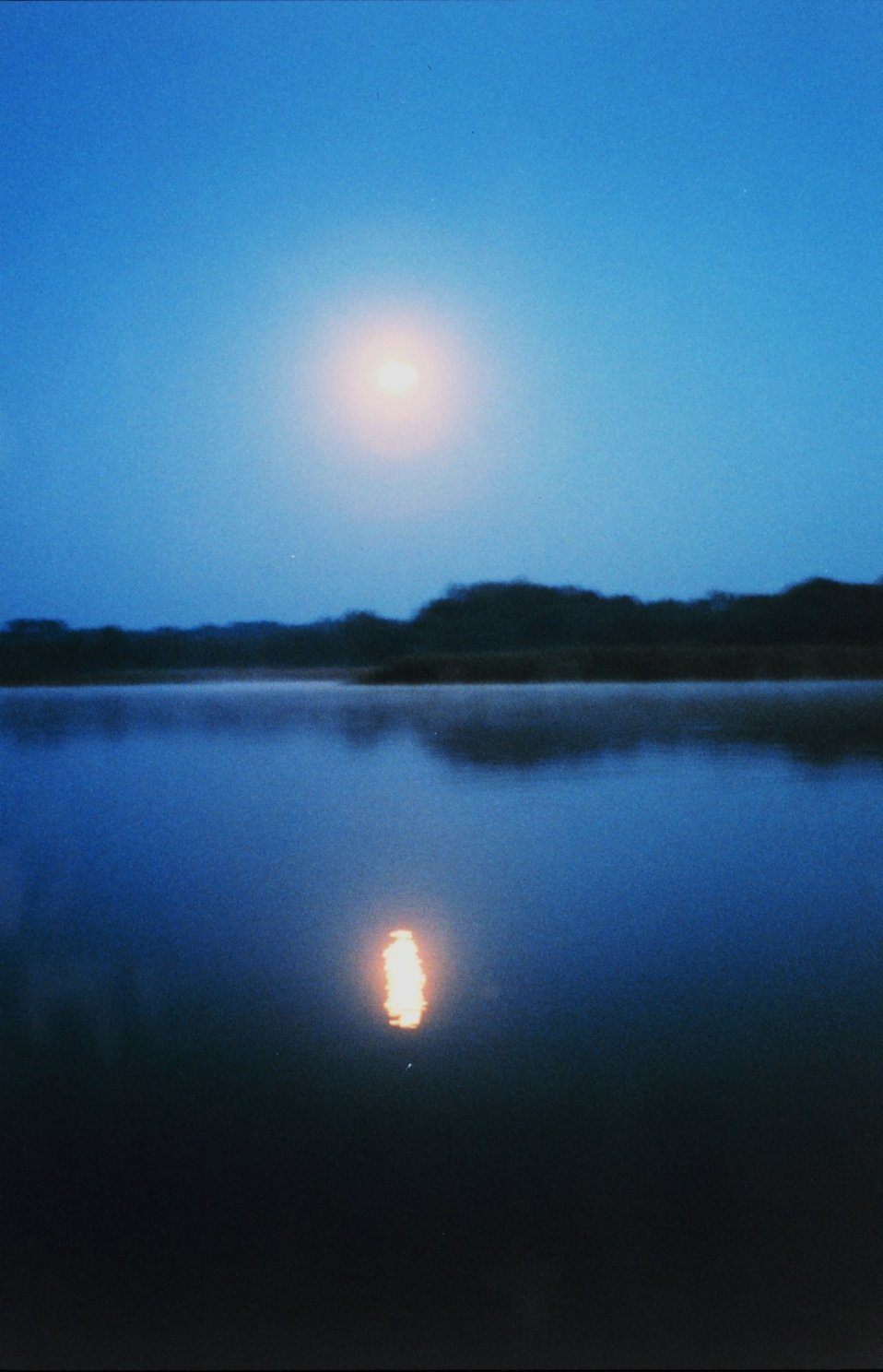 A full moon reflecting off the river - almost at dawn