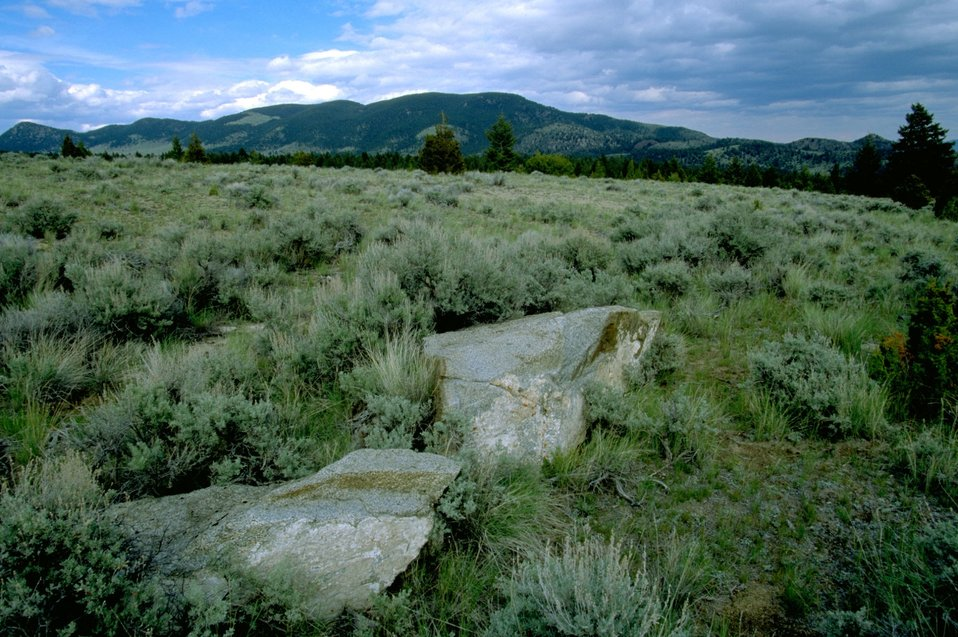 Sagebrush and grass with large rocks in the foreground