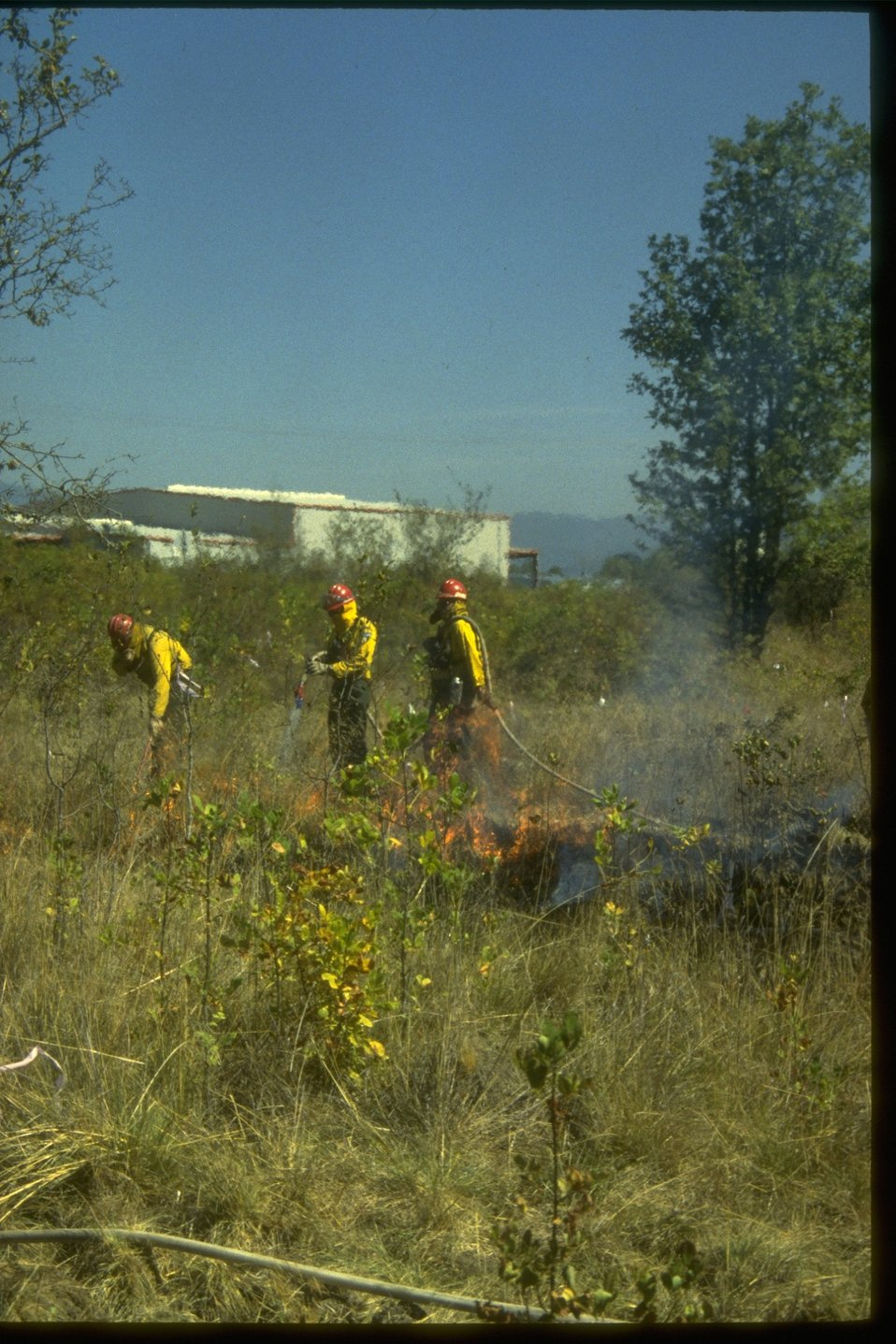 Prescribed burning at Wetlands.