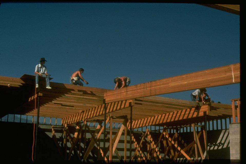 Wood uses:  Construction framing.