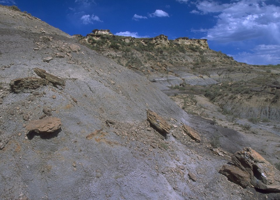 View of formation where fossils are found in Lance Creek Fossil Area, Newcastle Field Office.