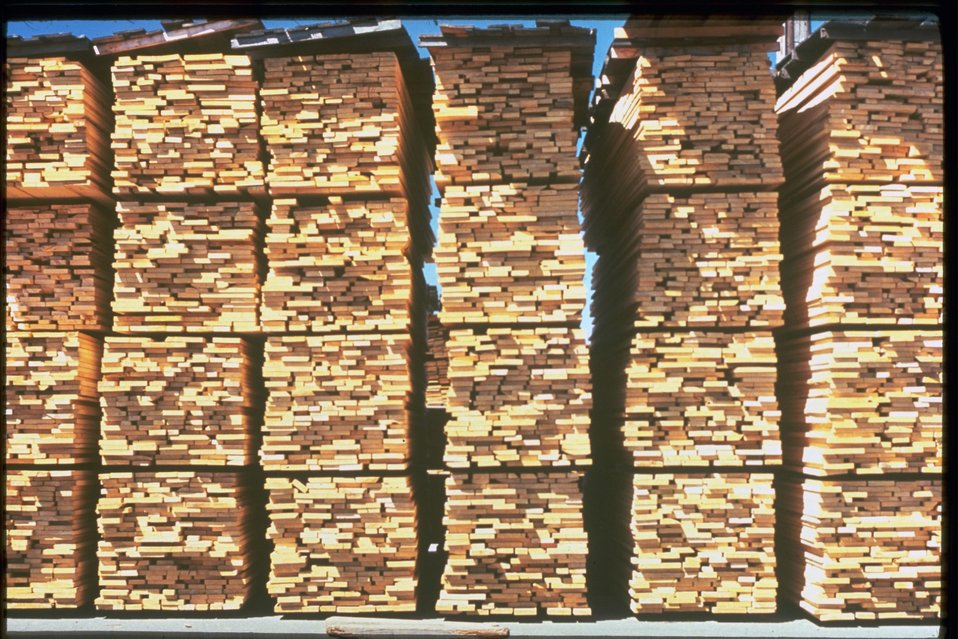 Wood drying at a lumber mill.