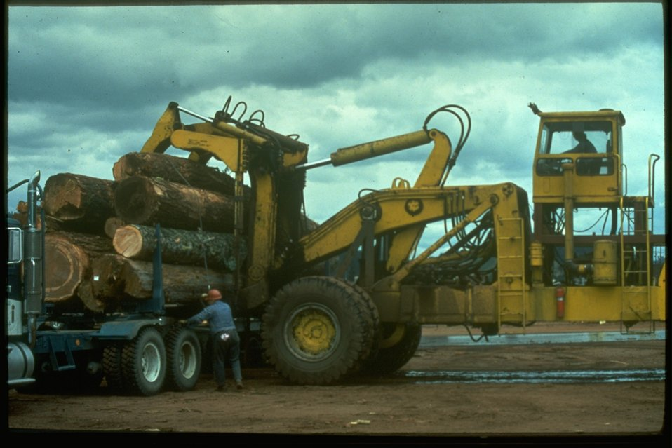 Unloading a log truck at the lumber mill.
