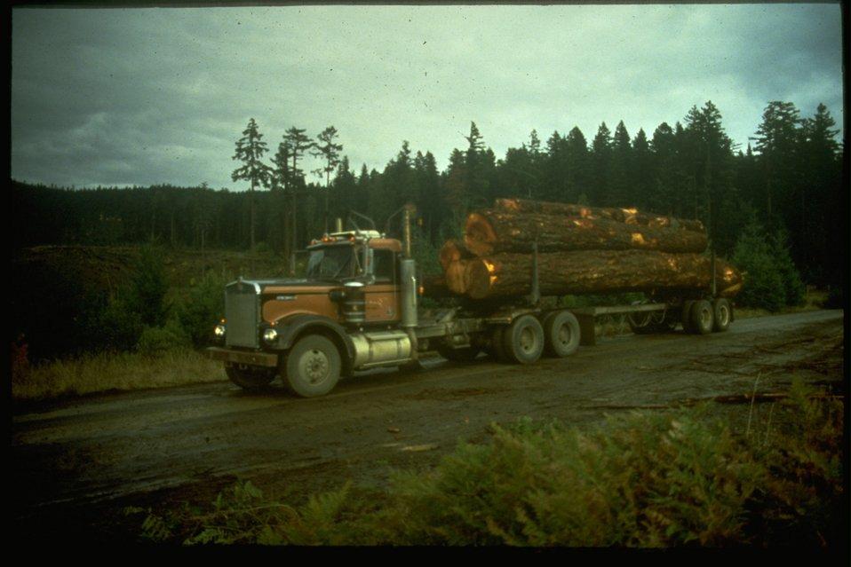 Log truck on logging road.