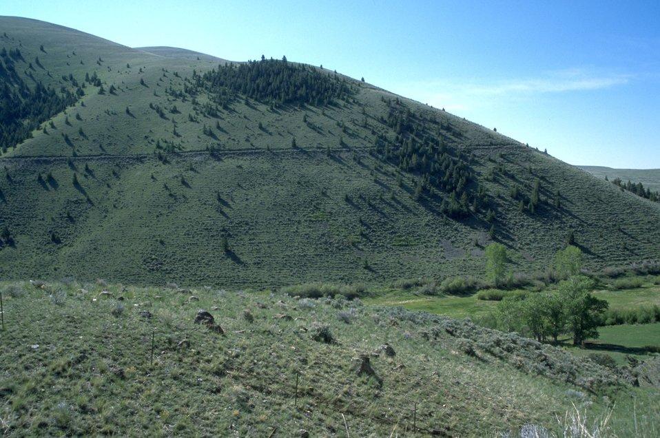 Road cutting around a green hillside