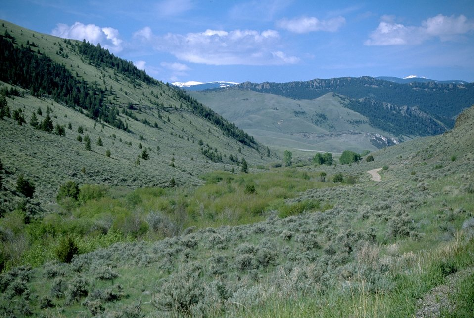 Sagebrush hillsides with snow-capped mountains in the background