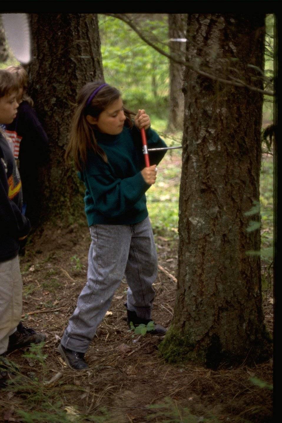 Students at Wolf Creek Elementary are taught environmental education.