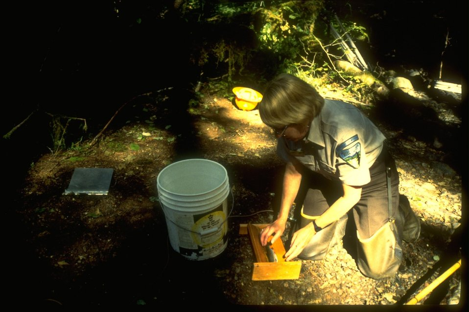 Fish biologist measures fish and writes down specific biological characteristics about the fish.