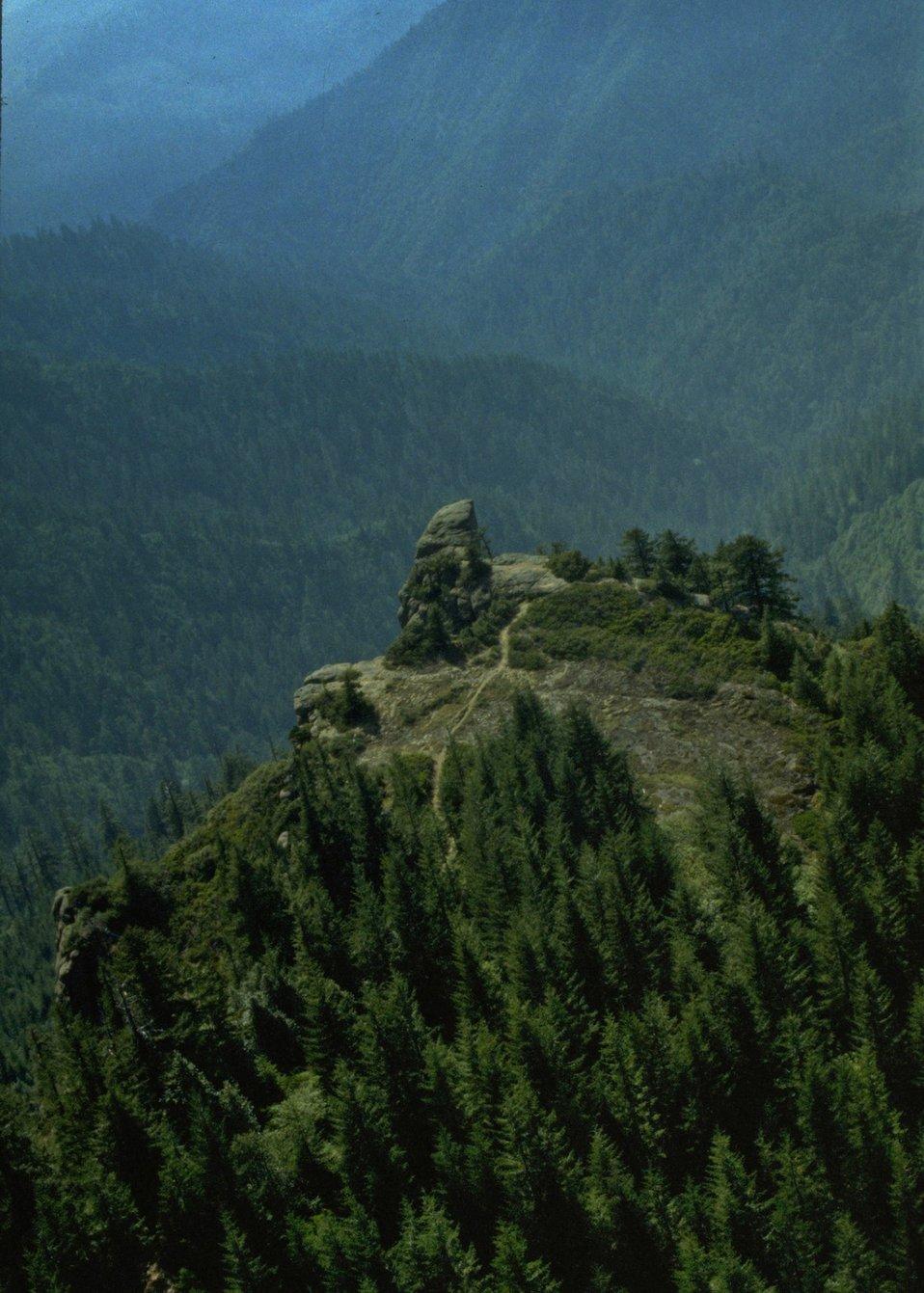 Wilderness: Hanging Rock Wild Rogue.